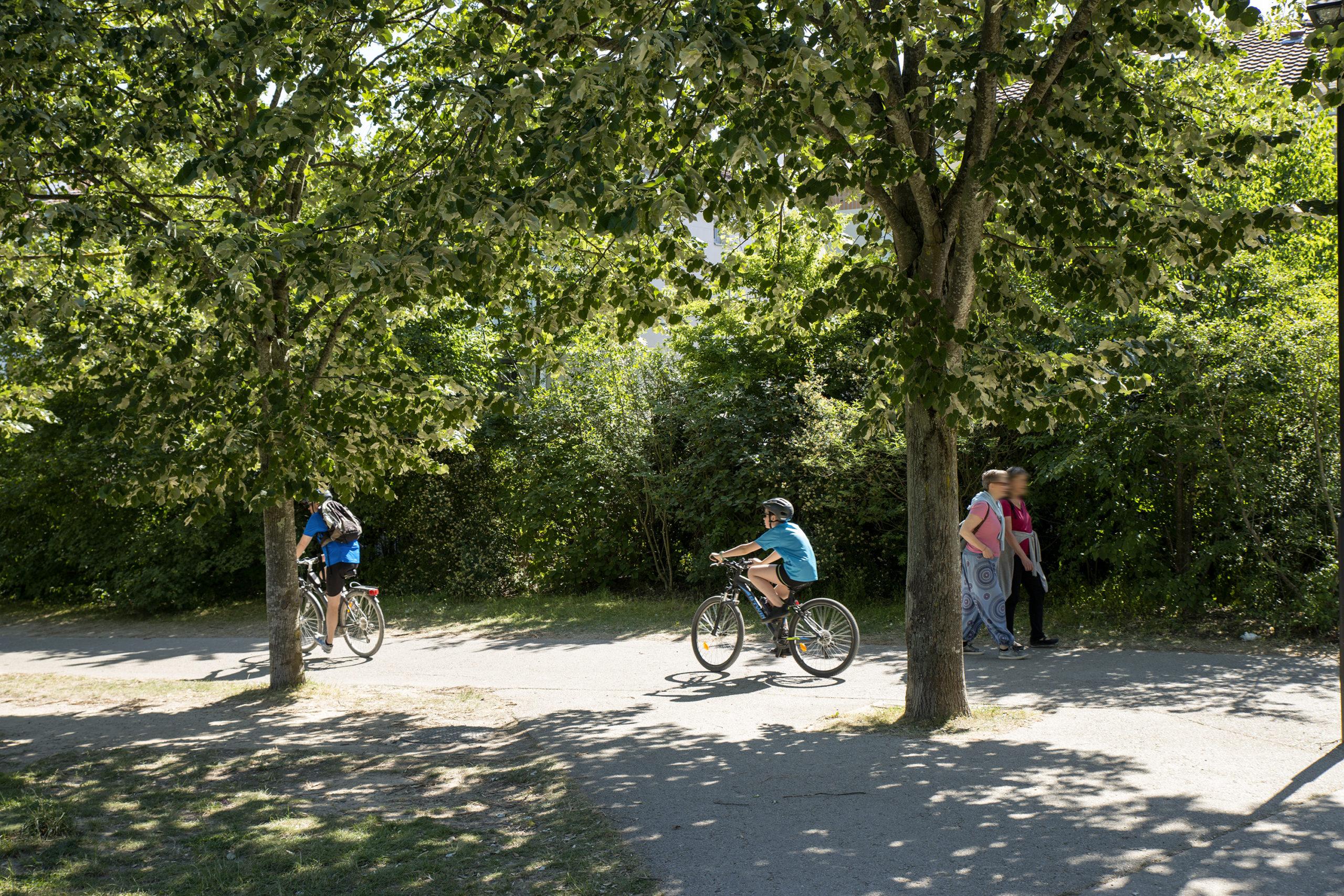 vélo, Fontenay-aux-Roses, municipales, Gilles Mergy, EELV
